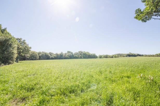 For Sale in Crow Lane, Dalton | Jump-Pad – Newton-le-Willows - 1