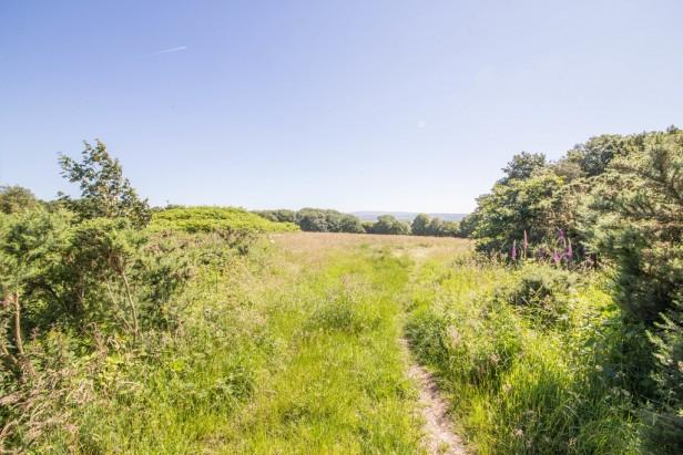 For Sale in Crow Lane, Dalton | Jump-Pad – Newton-le-Willows - 4