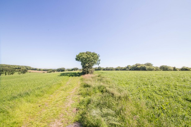 For Sale in Crow Lane, Dalton | Jump-Pad – Newton-le-Willows - 5